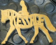 Dressage (horse)Named Puzzle